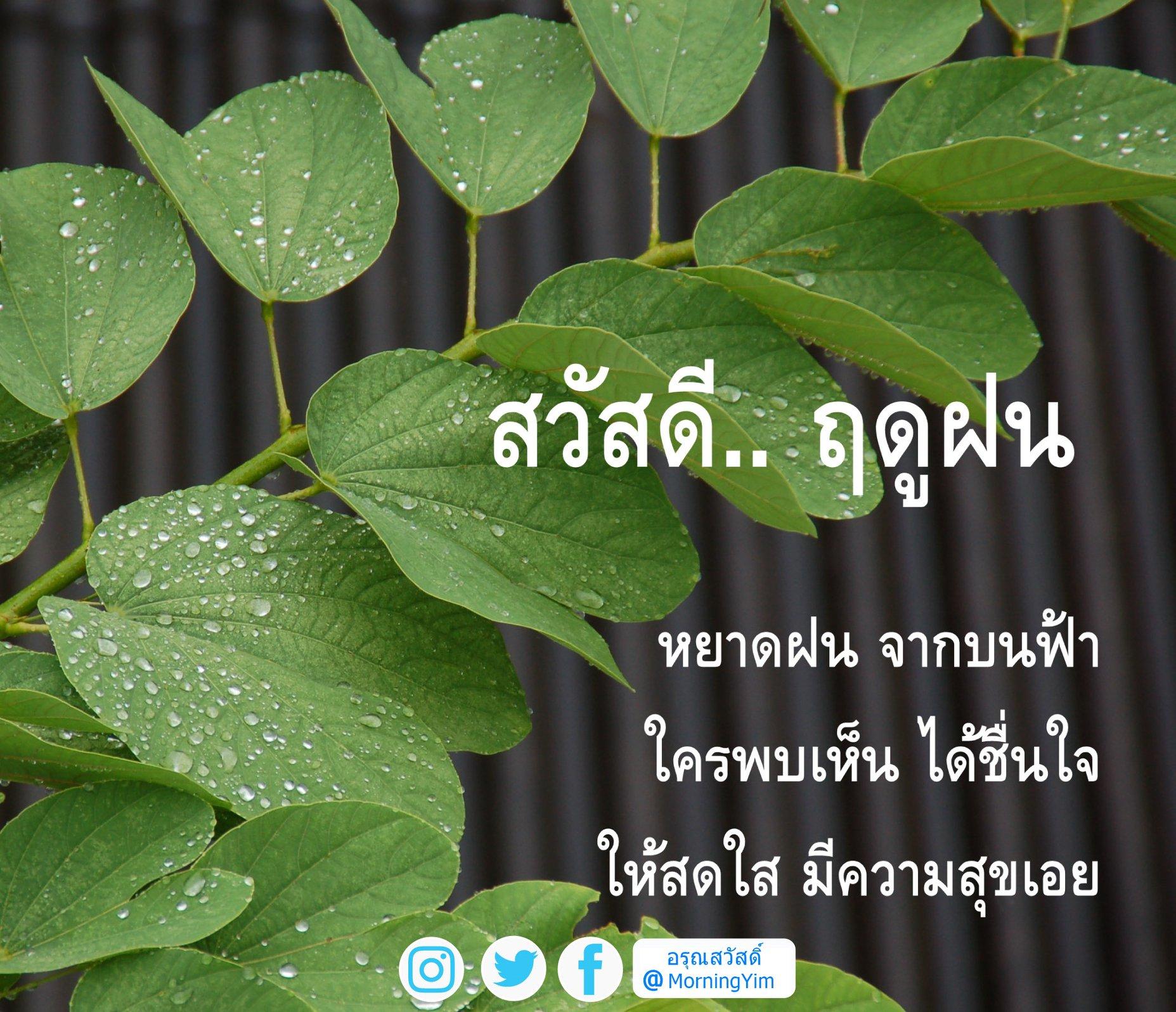 อรุณสวัสดิ์ฤดูฝน
