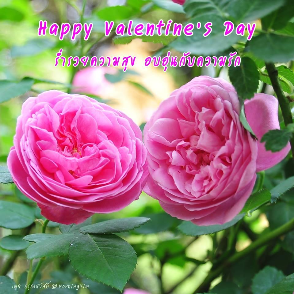 สวัสดีวันวาเลนไทน์ Valentine's Day