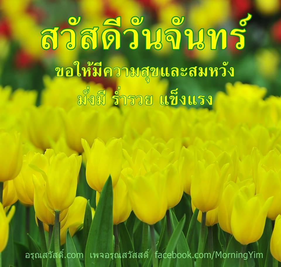 สวัสดีวันจันทร์ด้วยดอกทิวลิปสีเหลือง