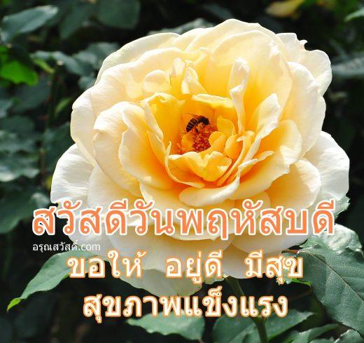 สวัสดีวันพฤหัสบดี