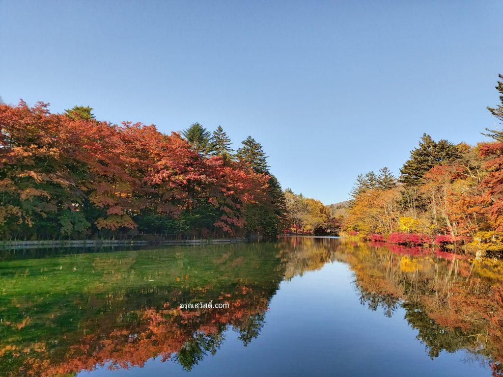 บึงใบไม้เปลี่ยนสีคุโมะไบเกะ Kumobaike Pond
