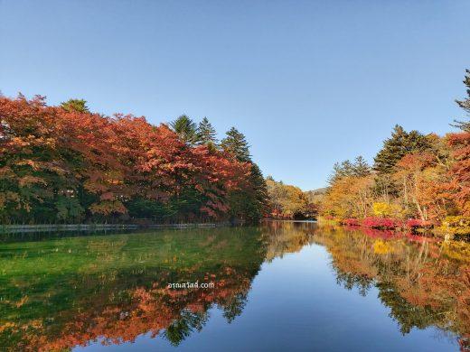เที่ยวญี่ปุ่นที่บึงคุโมะไบเกะ Kumobaike Pond