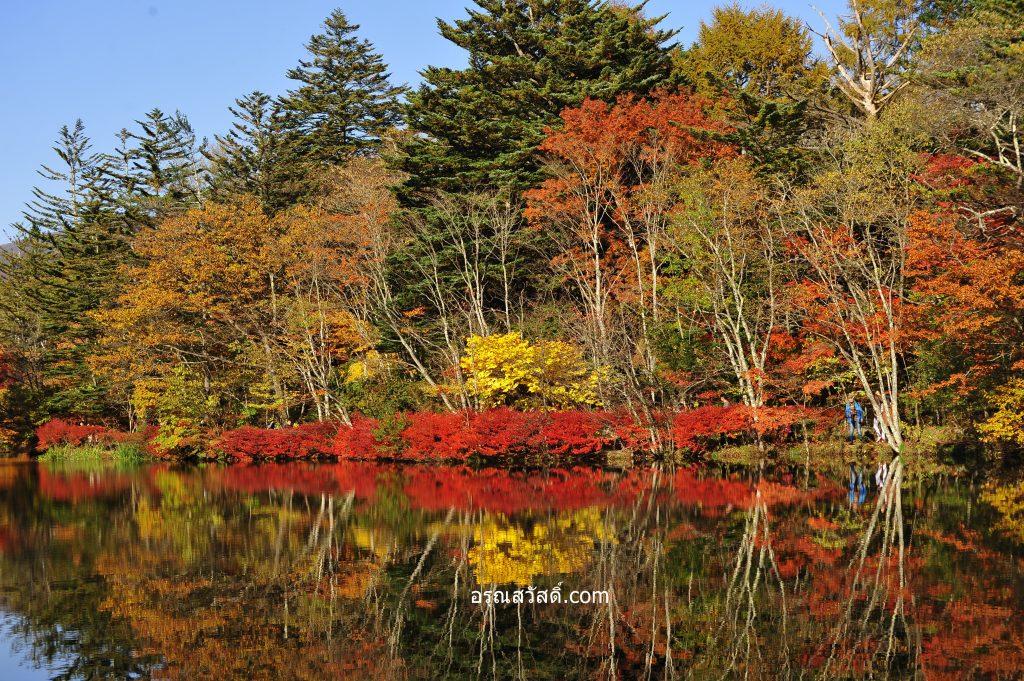 คุโมะไบเกะ Kumobaike Pond